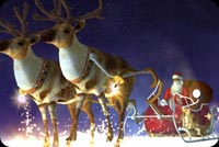 Santa & Reindeer Christmas Night Background