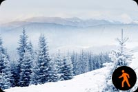 Animated Snowing Winter Scene Background