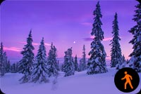 Animated Snowfall Forest Background